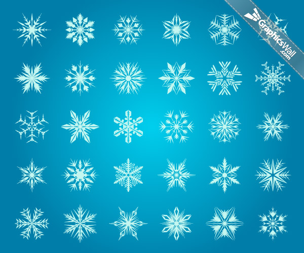 30 Snowflakes - Vector Set 10